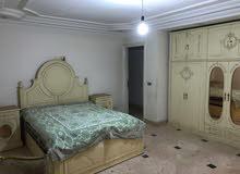 شقة مفروش للايجار باطلالة على اهرامات الجيزة