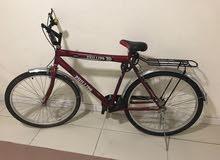 دراجة هوائية بعجمان
