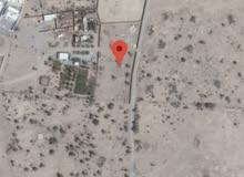 600 OMR land for rent in Rumais  ارض للايجار في الرميس