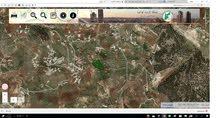 مزرعه زيتون عشر دنمات في جرش مزروعه زيتون منتج منطقة جرش