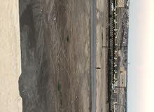 يوجد 5 محلات للأيجار في صحار ( صناعية صحار امام الأحوال المدنيه)