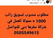 مطلوب مندوب تسويق راتب 1000 درهم + عمولة للعمل في شركة تسويق مقرها دبي