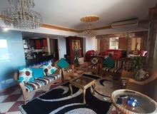 شقة للبيع لوران - فيو بحر مباشر