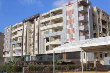شقة للبيع 227 متر مصر الجديدة - شيراتون