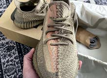 Yeezy 350 all sizes available