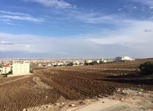 شقق طابقية للبيع مساحة 216 م في حي فلل و قصور