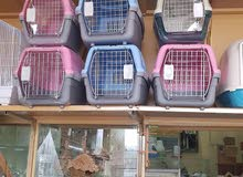 cat and dog cages and bed available
