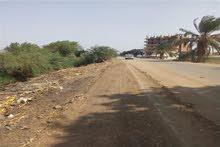 ارض مساحتها 55 فدان للبيع على طريق اسيوط الغربي