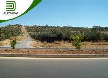 ارض مميزة للبيع في عراق الامير بمساحة 9 دونم