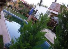 فيلا راقية مع حوض سباحة وحديقة وملعب معشب