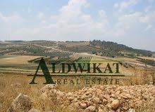 ارض للبيع في  وادي شعيب قرب المقام مساحة 4000 م