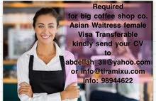Asian Waitress female