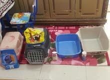اغراض قطط للبيع