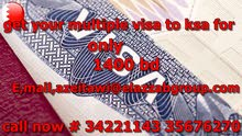 Get your multiple visa to ksa for 1400 bd