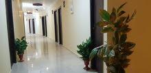 عيادات للبيع بمدينة 6 اكتوبر على المحور استلام فورى وبتسهيلات