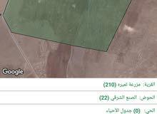 قطعة ارض مشتركة بجانب جامعة اربد الاهلية