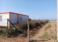 قطعة أرضية للبيع في شمال المغرب في أمسا على البحر مباشرة
