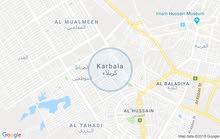 مطلوب شقه او بيت للايجار في كربلاء