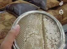 عسل الشمع الحضرمي الفاخر