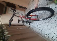 دراجة 26 طليانية