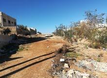 قطعة ارض من اراضي جنوب عمان منطقة جاوا