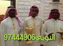 قهوجية دله ابوعلى النوبي97444906