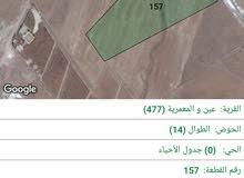 بلعما ارض للبيع بلعما منطقة عين المعمرية الزعفرانه المفرق رحاب