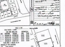 أول صفة بجانب جامع ريسوت ومقابل المنطقه الحرة والميناء