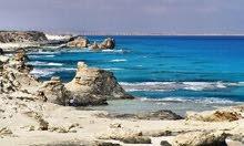 تملك شقه  بمشروع بانوراما ستار العوام  بمطروح بالقرب من شاطى