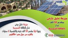 مزرعة نخيل بارحي - تدار بالطاقة الشمسية - بمقدم 50 الف جنيه وتقسيط على 6 سنوات