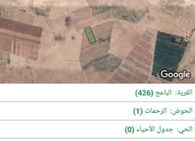 ارض للبيع حوض الرحمات 11 دونم مفروزات رقم القطه 264 بسعر مميز