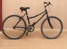 دراجة ايطالية شيك أو كاش