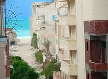 apartment for sale in Alexandria- Nakheel