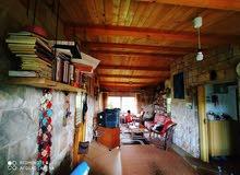 3BR Villa in Tartous (12km from city) - فيلا 3 غرف نوم مع مزرعة في ريف طرطوس (12كم عن المدينة)