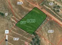ارض زراعية للبيع في السلط /عيرا مساحتها 4 دونمات الا