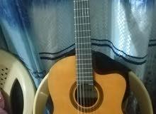 كيتار اسباني هوائي كهربائي ماركة قرطبة Cordoba Guitars