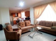 Modern furnished/2 BHK apartment-inclusive with pool