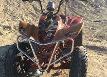 البيع بقي فرخ الرابتر 250cc