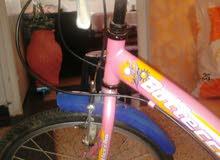 لون الدراجة الأزرق والوردي