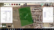 ارض للبيع في منطقة الكرامة الشونة الجنوبية منطقة الاغوار