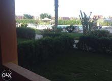 شاليه أرضي سعر لقطه للبيع بجولف بورتو مارينا / A Ground Chalet for sale in Golf Porto Marina