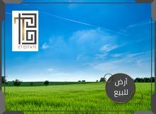 أرض للبيع قرب سد الملك طلال – مفروزة