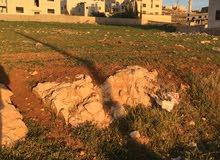 قطعة ارض للبيع في شفا بدران حوض مرج الاجرب مرج الفرس عيون الذيب ام العروق القصبات