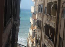 شقة 210 م بجوار فندق نوبل علي بحر كليوباترا