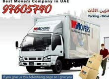 horse shifting best price