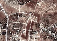 ارض 800م في اسكان الماليه ناعور تبعد 5كم هوائي عن طريق المطار استثماريه وسكنيه