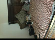 Full Single Room Furniture Available In Jeddah. 800 SAR
