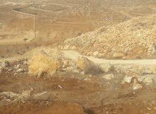 قطعة ارض 4 دنم طريق الزرقاء جرش من أراضي المفرق دحل حوض الحوطان اقرب لاراضي جرش