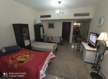 استديو مفروش 5 سراير للايجار الشهري في عجمان ابراج الهورايزون 2700