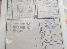 فرصه للحادين قطعتان شبك الهرم الخامسه على شارع مرصوف بالقرب من جامع المهنا بن جيفر اليحمدي